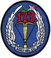 173rd Aviation Company (AHC)