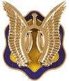B Troop, 3rd Squadron, 17th Cavalry Regiment