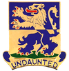 D Company, 1st Battalion, 119th Infantry Regiment
