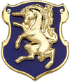 D Troop, 7th Squadron, 6th Cavalry