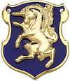 7th Squadron, 6th Cavalry