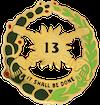 13th Cavalry Regiment